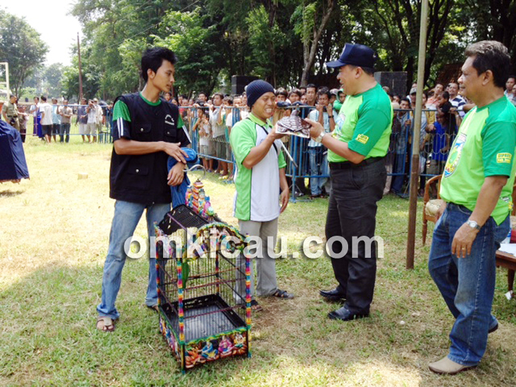 Bupati serahkan hadiah kepada para juara di Kelas Cucak Hijau Bintang.