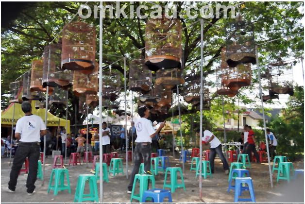 Suasana lomba Kancil BC Cup I di Makassar,
