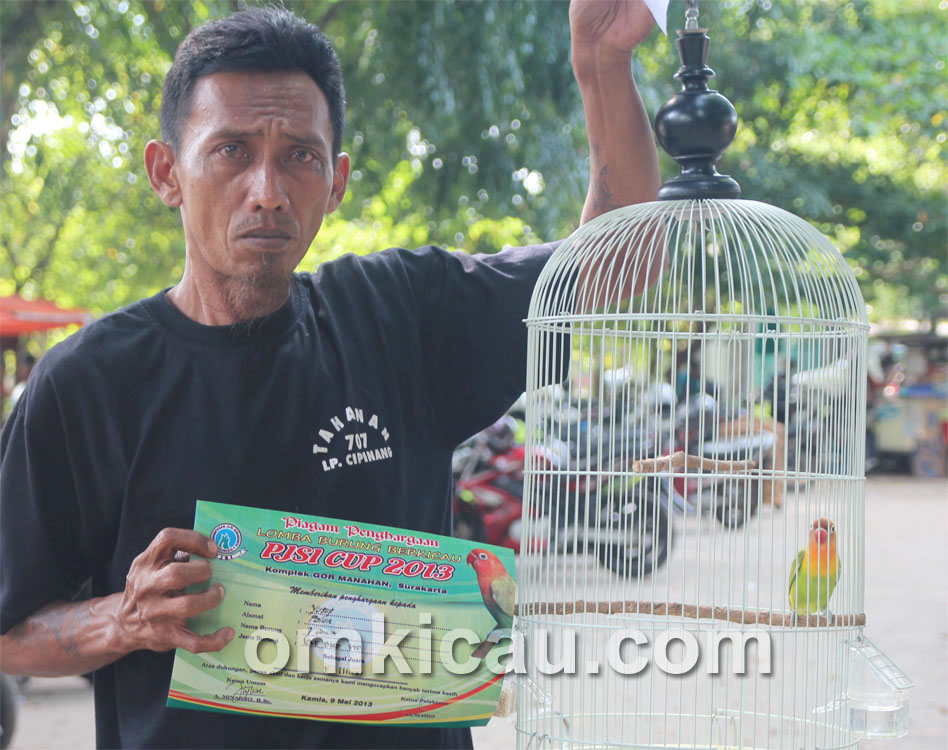 Yusuf: Lovebird Pituduh mulai nampil.