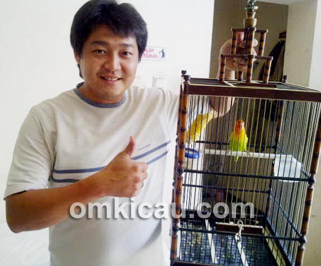 Mr G Kebumen dan lovebird