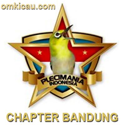 pcmi chapter bandung