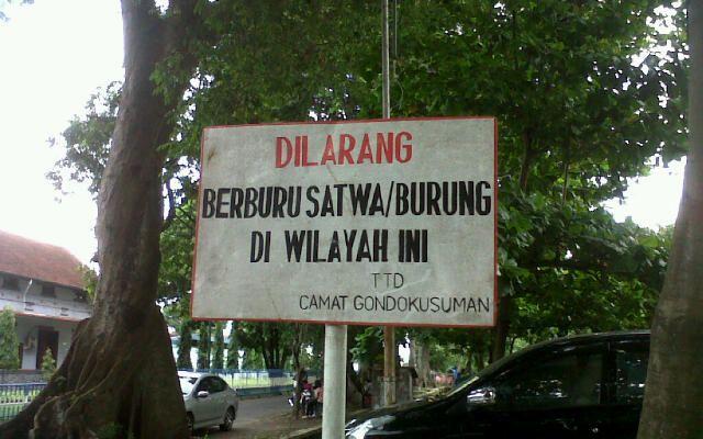 Larangan berburu burung di Kecamatan Gondokusuman. Yogyakarta