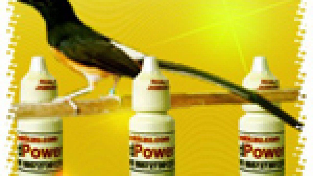 Manfaat Atp Untuk Burung Kicauan Om Kicau