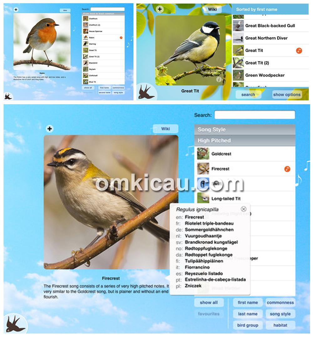 aplikasi peniru suara burung