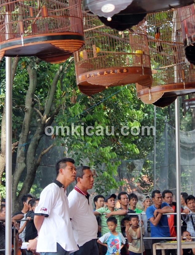 Lomba Burung Jatijajar Fiesta
