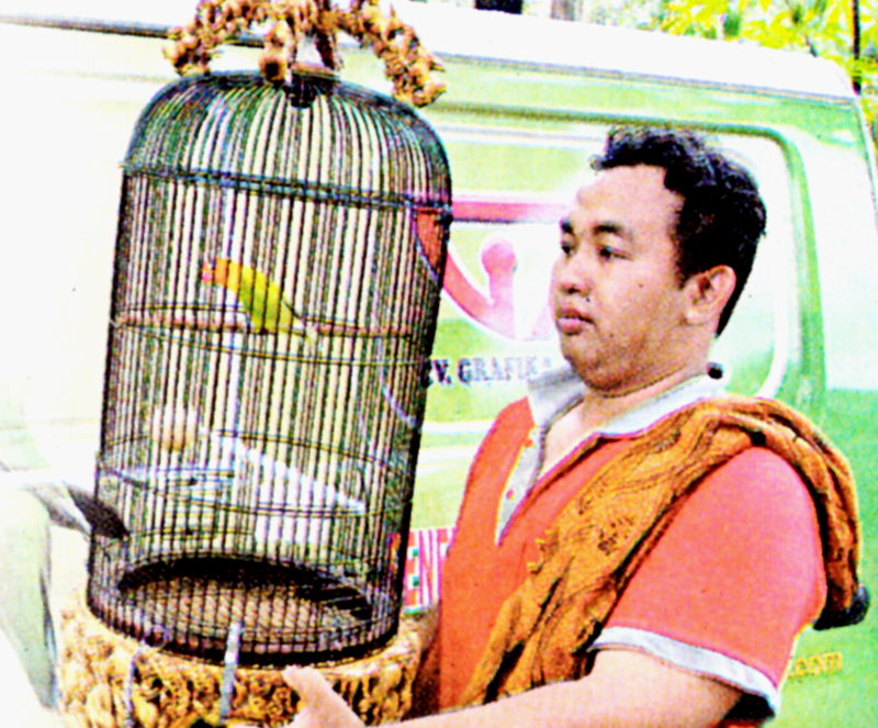 Yayat Andrianto, perawat lovebird jawara