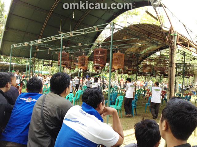 Lomba Burung Gebyar Ramadhan Purwokerto