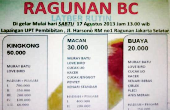 Brosur Latber Ragunan BC