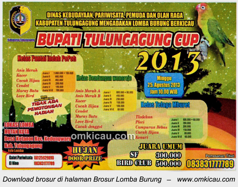 Brosur Lomba Bupati Tulungagung Cup 25 Agustus 2013