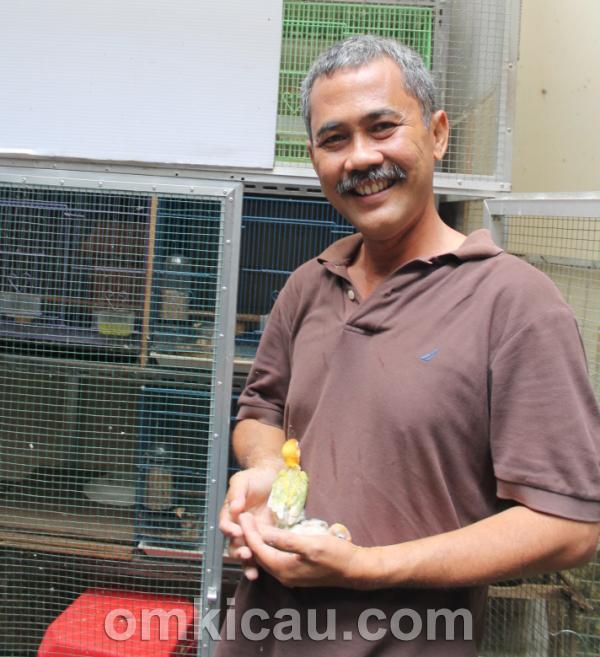 Ir Ernawan, Crystal BF Serpong Tangerang