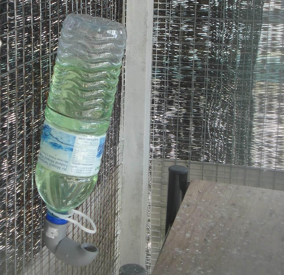 Drink feeder yang siap digunakan