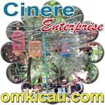 feat cinere