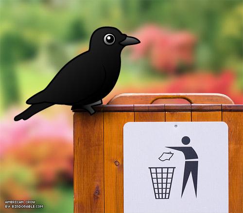 Gagak menjadi simbol penjaga kebersihan