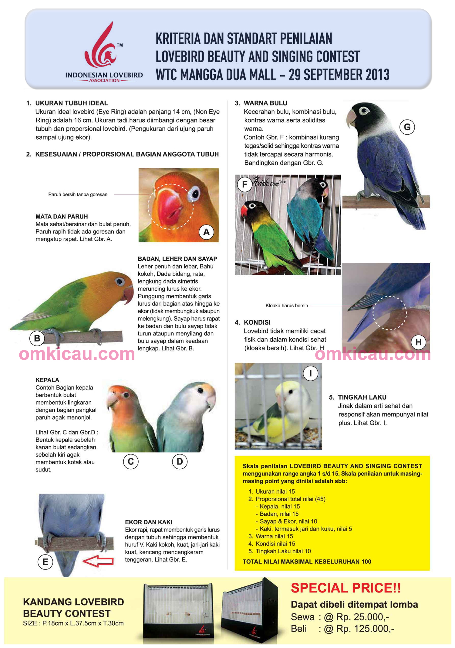 Kriteria penilaian lomba lovebird