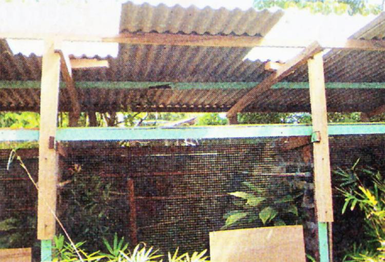 kontruksi atap terbuka