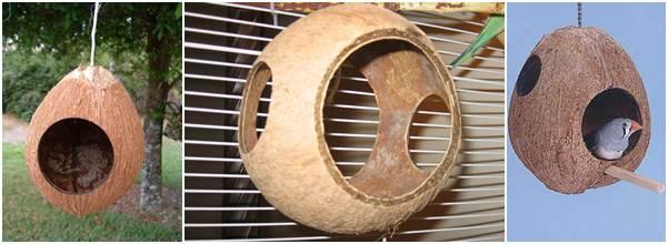 Bentuk sarang dari tempurung kelapa