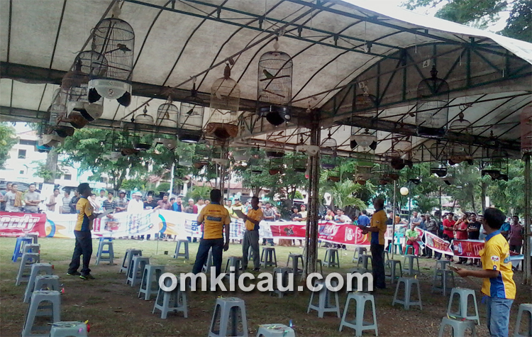 Lomba Burung Berkicau DJ Cup Banda Aceh