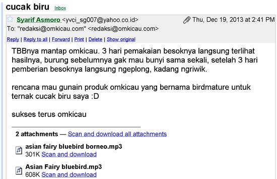 email pengguna tbb