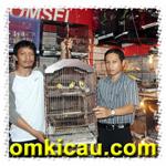 feat Mifta Bird Shop