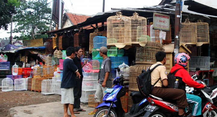 Pasar Burung Pramuka