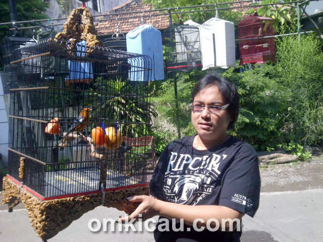 Sonny Lie dan anis merah Bali Dancer