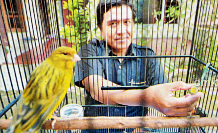 Irul Wistrop dan kenari Green Peace
