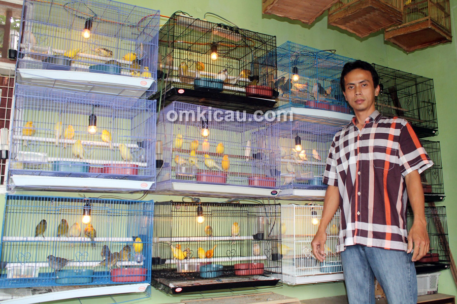 Jemy Canary Bogor