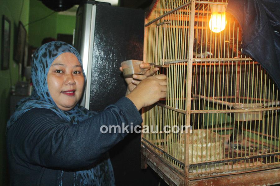 Sufi Bird Farm Jakarta