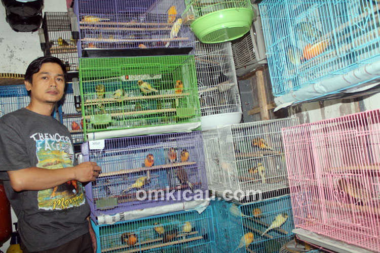 Trisakti Bird Farm Jakarta