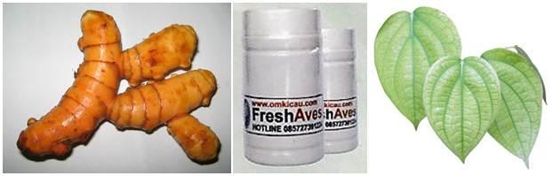 Bahan-bahan yang digunakan untuk mengatasi kerusakan bulu akibat infeksi kutu