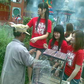 Pedagang burung emprit