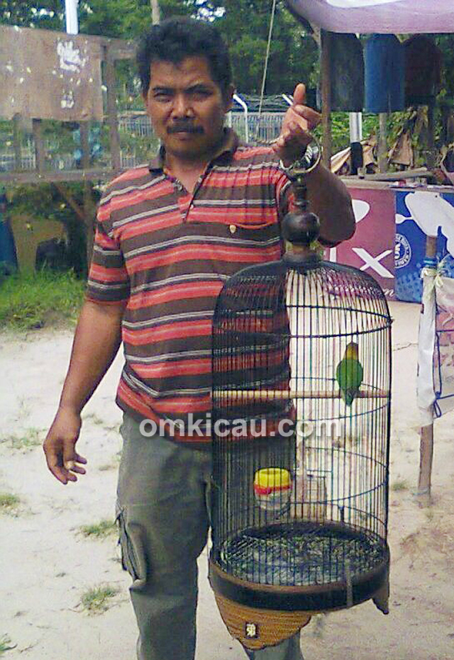 Om Yono dan lovebird Frontal