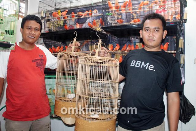 Burung pailing di Trisakti BF Jakarta