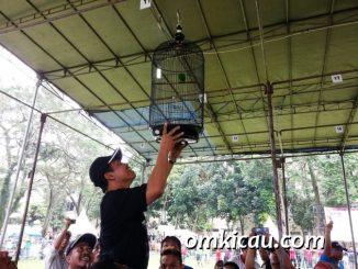Walikota Depok, Dr Ir Nurmahmudi Ismail Msc, menggantangkan burung LB milik Team Lontong BC.