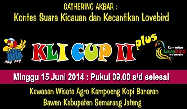 feat kli cup2