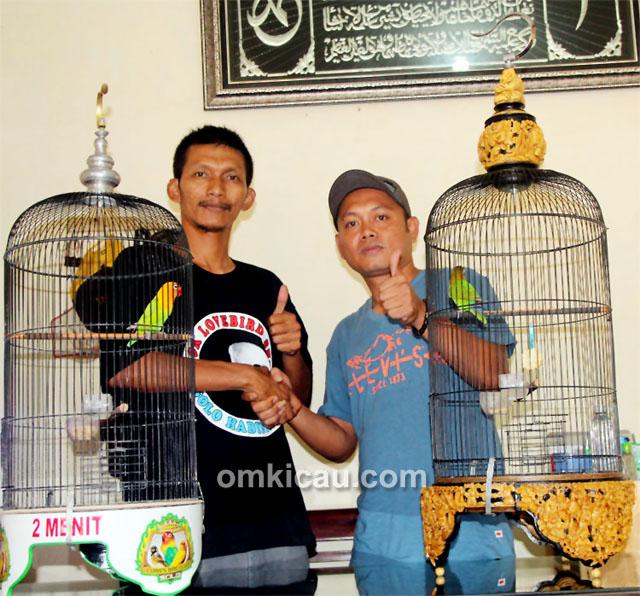 Transaksi lovebird Exotic