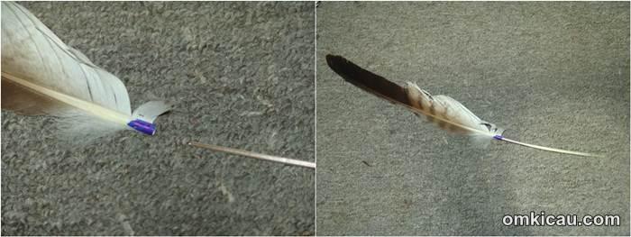 Menyambung bulu yang rusak