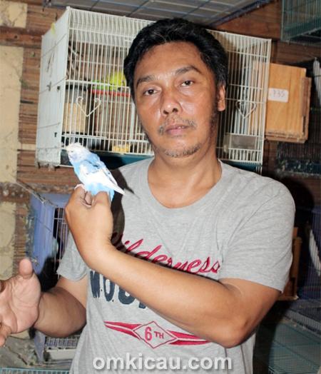 Rudy Pelung dan parkit jinak