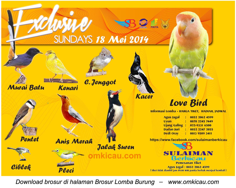 Brosur Lomba Burung Berkicau Exlusive Sunday, Bandung, 18 Mei 2014