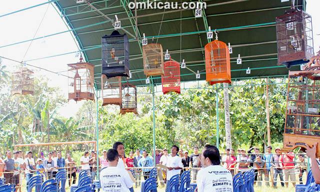 Lomba Burung 2nd Anniversary Kimato BC Blora