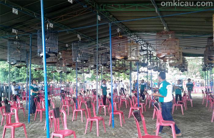 Lomba Burung Gebyar Palembang Cup 1