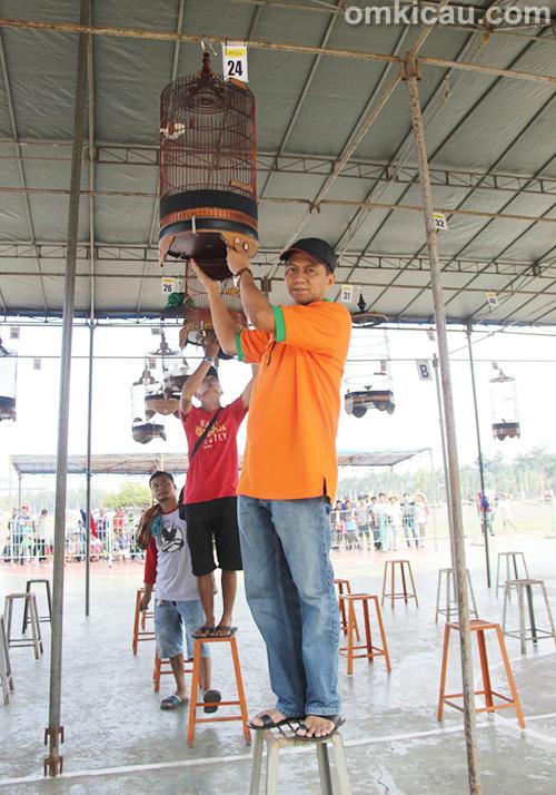 Lomba Burung Berkicau Jakarta Cup 1