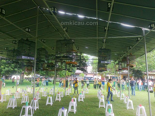 Lomba burung berkicau Bupati Cup Lampung Utara