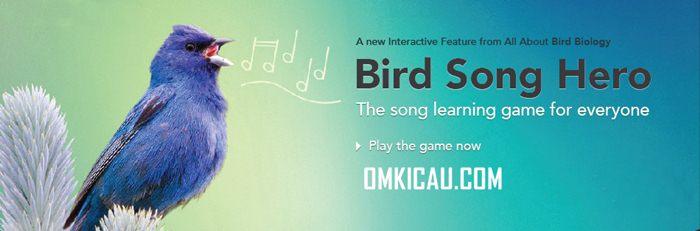 Bird Song Hero
