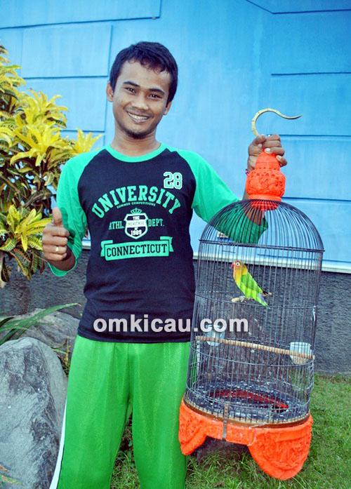Lovebird Braja Jr