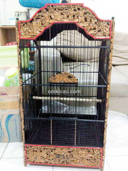 Pencurian burung