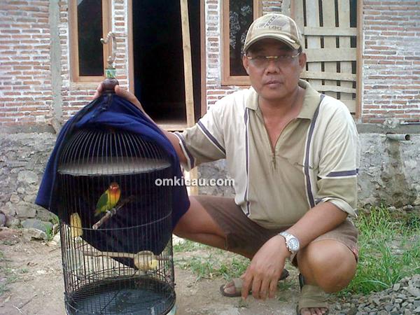 Iswandono dan lovebird Murano