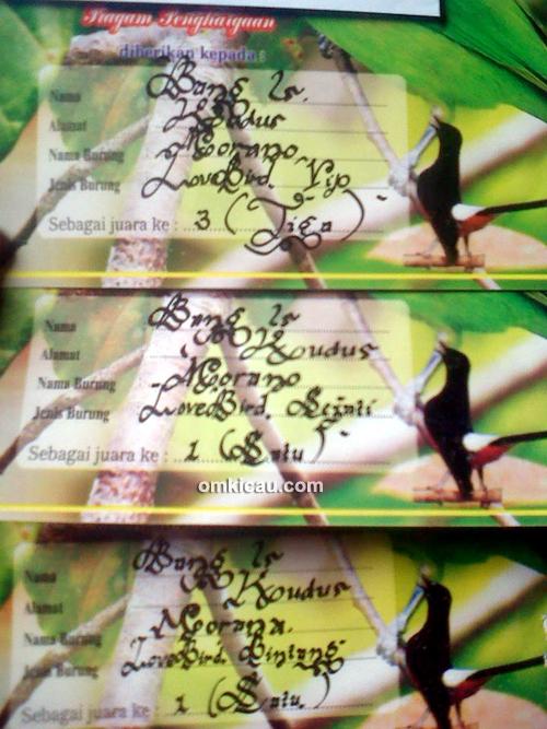 Piagam kemenangan lovebird Murano
