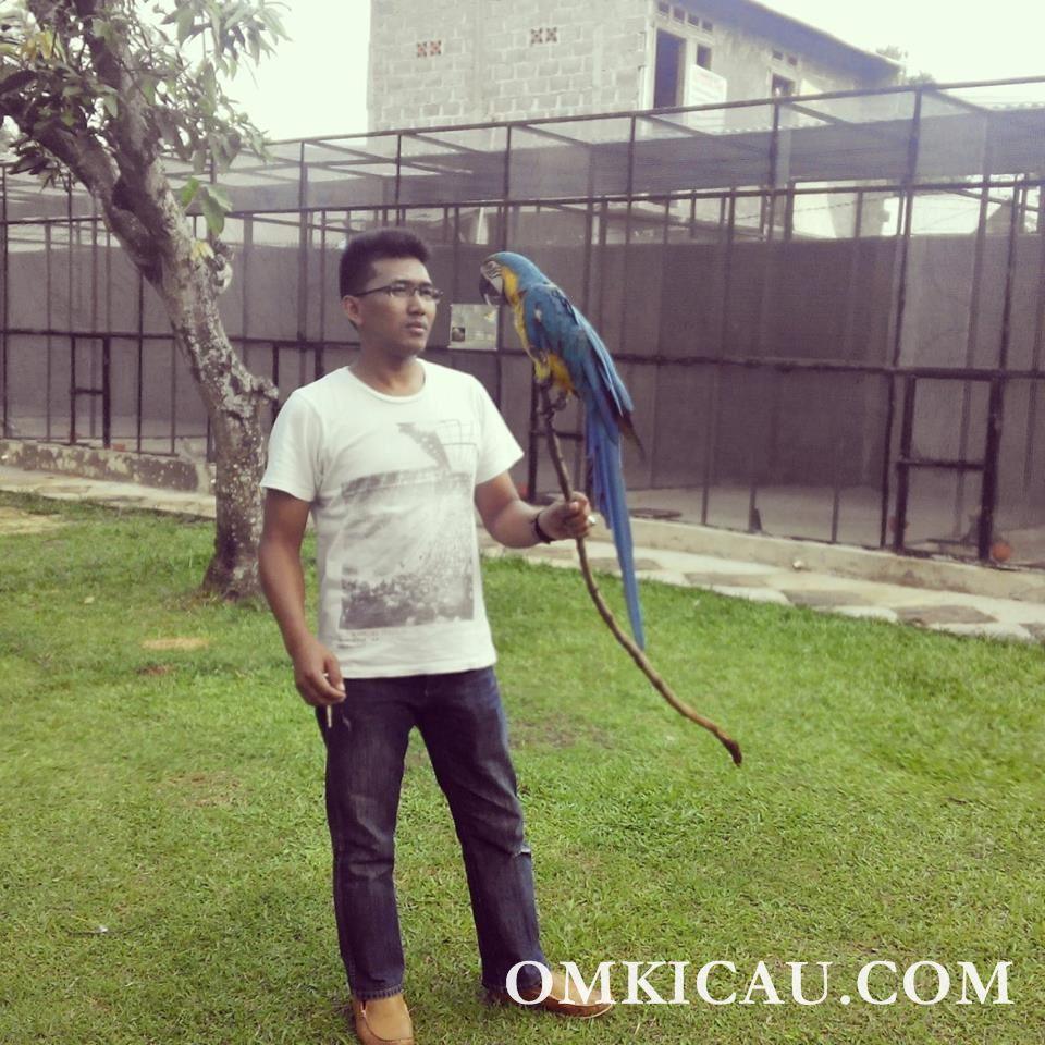 Supriyanto pengelola Mega Bird & Orchid Farm di Kabupaten Bogor