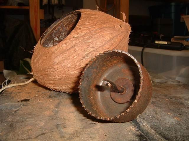 Alat untuk melubangi tempurung kelapa